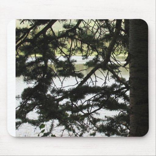 Lago de plata a través de ramas del pino tapetes de ratones