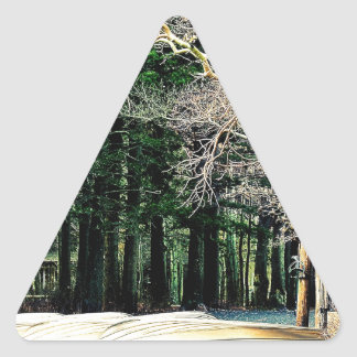 Lago de plata California Pegatina Triangular