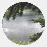 Lago de plata enmarcado por las ramas imperecedera etiqueta redonda