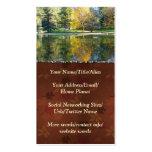 Lago de plata tarjeta de visita