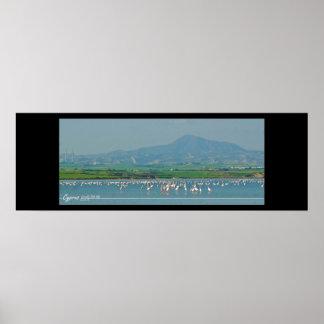 Lago de sal de Chipre-Larnaka con los flamencos Póster