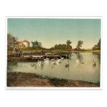 Lago de Worlitz, de Eichenkranz y de Gondelplatz,  Tarjetas Postales