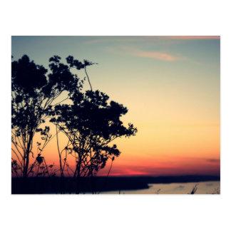 lago del ozarks postal