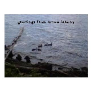 lago del seneca, ny postales