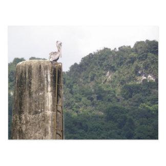 Lago dos Bocas Utuado Puerto Rico Postcard