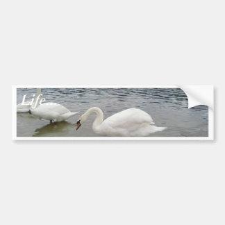 Lago dos swans pegatina para auto
