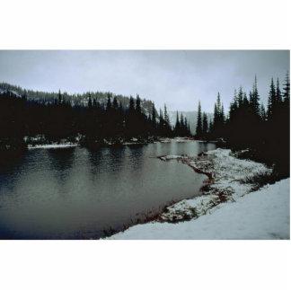 Lago en inviernos escultura fotografica
