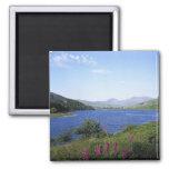Lago escocés iman de nevera