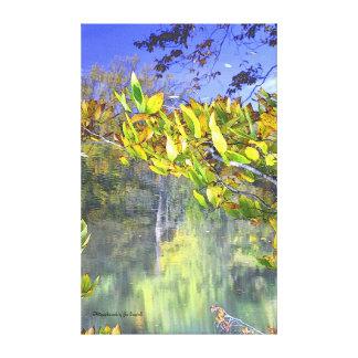 Lago fall lienzo envuelto para galerías