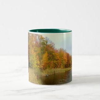 Lago fall/taza soleados de los árboles taza dos tonos