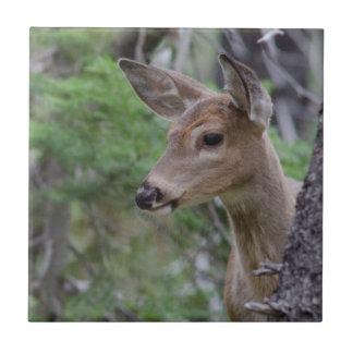 Lago Fishercap del retrato de los ciervos de la Azulejos Cerámicos