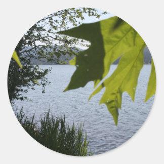 Lago grove de la cabaña en verano pegatinas redondas