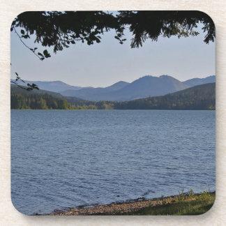 Lago grove de la cabaña posavaso