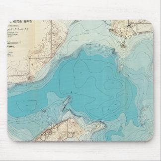 Lago hidrográfico Mendota del mapa Tapete De Ratones