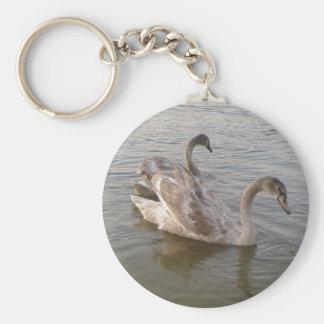 Lago joven swans llavero redondo tipo pin