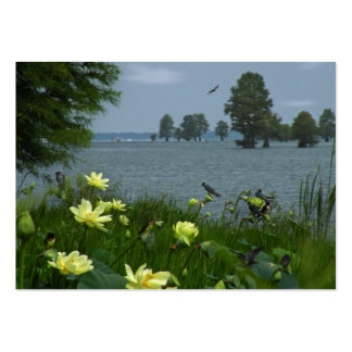 Lago lotus con la tarjeta del ATC de la foto de lo Plantilla De Tarjeta De Visita