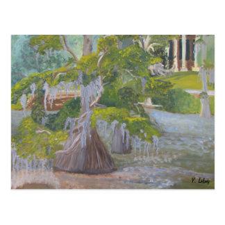 Lago louisiana Cypress Tarjetas Postales