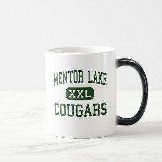 Lago mentor - pumas - católico - mentor Ohio Taza