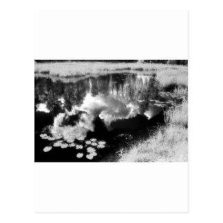 Lago Northwoods con paisaje reflejado hermoso Postal