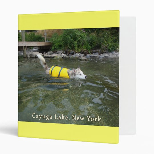 """Lago NY Cayuga de la natación del perro Carpeta 1"""""""