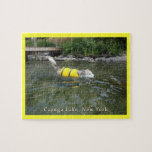 Lago NY Cayuga de la natación del perro Puzzle Con Fotos