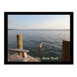 Lago NY Cayuga del agua del Handstand Postales