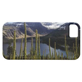 Lago ocultado park nacional de Glaicer Funda Para iPhone SE/5/5s