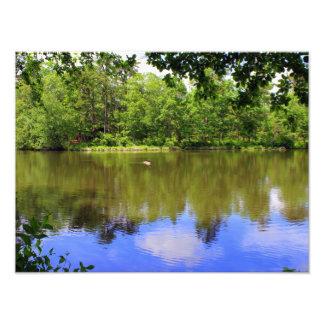Lago pacífico cojinete