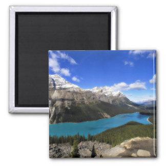Lago Peyto, canadiense Rockies Imán Cuadrado