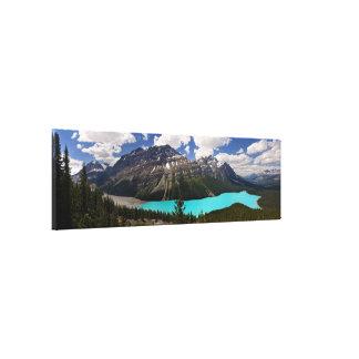 Lago Peyto en verano Lienzo Envuelto Para Galerias
