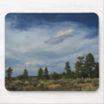 Lago pine, Utah Tapetes De Ratones