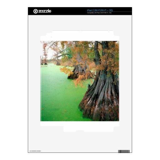 Lago Reelfoot Tennessee Skins Para eliPad 2