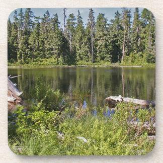 Lago reflejado posavasos de bebidas