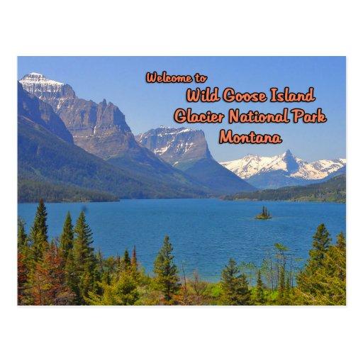 Lago salvaje Montana st Mary de la isla del ganso Postal