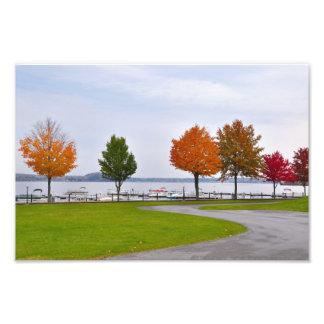 """""""Lago"""" Saratoga Springs solo, NY Cojinete"""