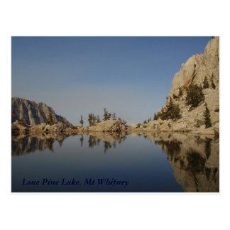 Lago solitario pine tarjetas postales