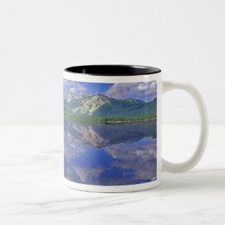 Lago stanley en las montañas del diente de sierra taza de café