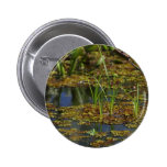 Lago swamps pins
