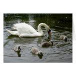 Lago swan del día de madre - tarjeta