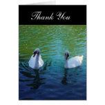 Lago swan - gracias las tarjetas