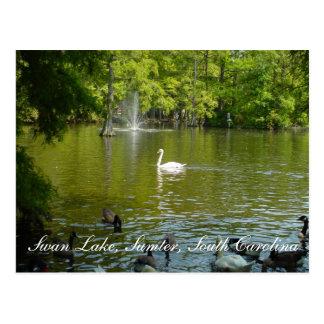 Lago swan tarjeta postal