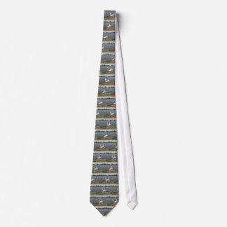 Lago swans corbata personalizada