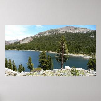 Lago Tenaya que imprimo Póster