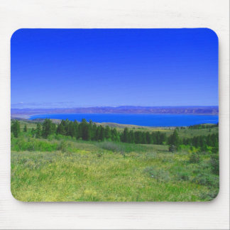 Lago Utah bear Alfombrilla De Raton