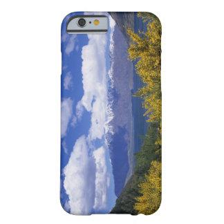 Lago Wakatipu y el Remarkables, Queenstown, Funda De iPhone 6 Barely There