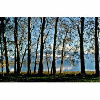 Lago Wanaka Escultura Fotografica