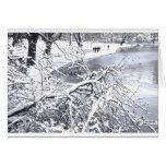 Lago winter del Central Park Tarjeta De Felicitación