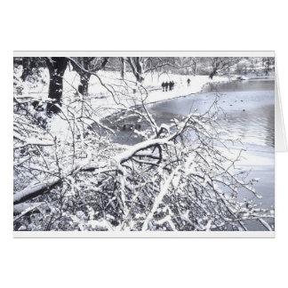Lago winter del Central Park Tarjetas