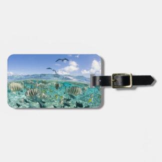 Lagoon safari trip featuring Stingrays Bag Tags