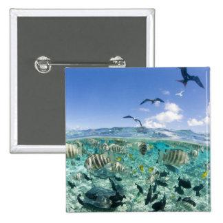 Lagoon safari trip featuring Stingrays Pin